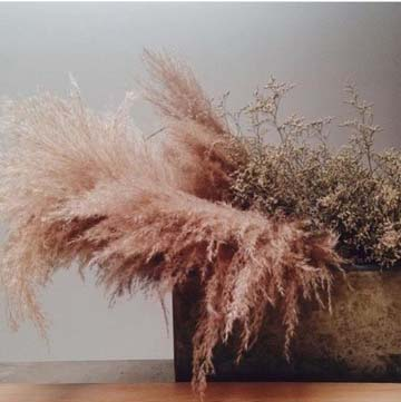 Delicate and Feathery - Image found on Charlotte Nichols Wedding Instagram Feed