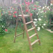 Medium Wooden Ladder